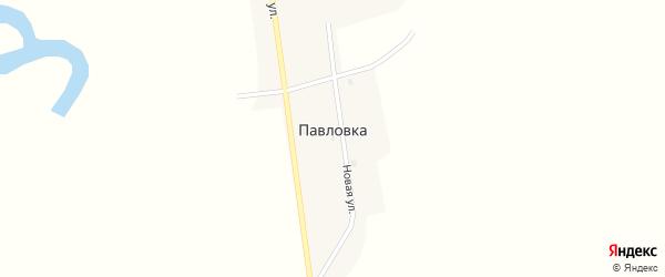Советская улица на карте села Павловки с номерами домов