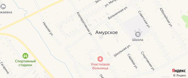 Кооперативная улица на карте Амурского села с номерами домов