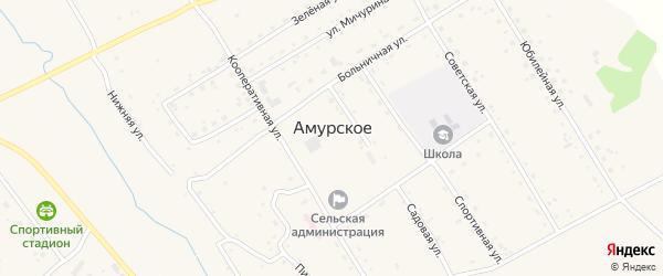 Трудовая улица на карте Амурского села с номерами домов