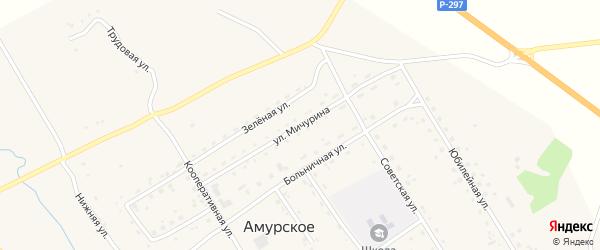 Улица Мичурина на карте Амурского села с номерами домов