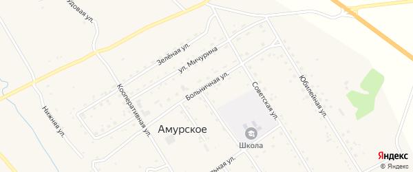 Больничная улица на карте Амурского села с номерами домов