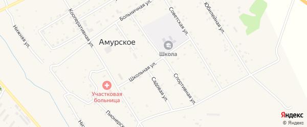 Школьная улица на карте Амурского села с номерами домов