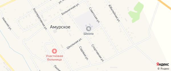 Спортивная улица на карте Амурского села с номерами домов