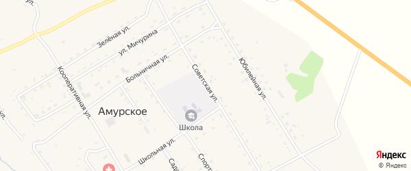 Советская улица на карте Амурского села с номерами домов