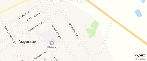 Юбилейная улица на карте Амурского села с номерами домов