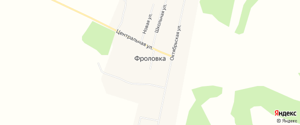 Карта села Фроловки в Амурской области с улицами и номерами домов
