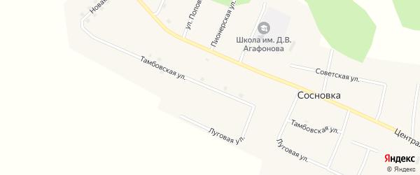 Тамбовская улица на карте села Сосновки с номерами домов