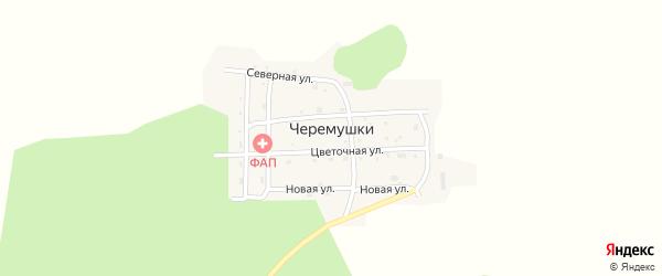 Западная улица на карте села Черемушки с номерами домов