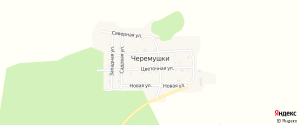 Цветочная улица на карте села Черемушки с номерами домов