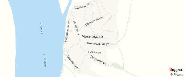 Карта села Чесноково в Амурской области с улицами и номерами домов