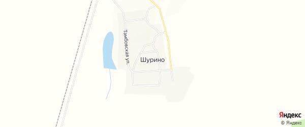 Карта села Шурино в Амурской области с улицами и номерами домов