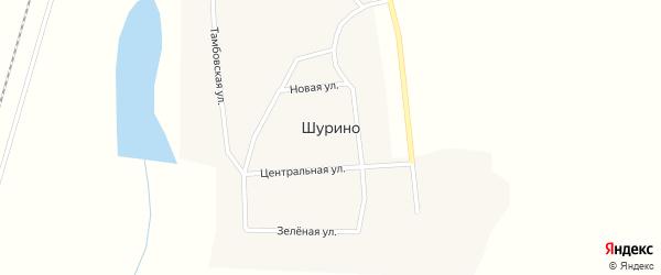 Целинная улица на карте села Шурино с номерами домов