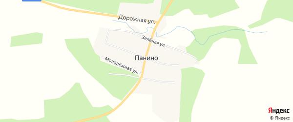 Карта села Панино в Амурской области с улицами и номерами домов