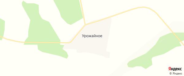 Карта Урожайного села в Амурской области с улицами и номерами домов