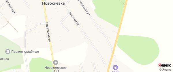 Колхозная улица на карте села Новокиевки с номерами домов