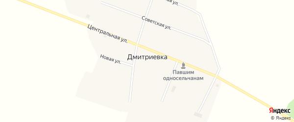 Центральный переулок на карте села Дмитриевки с номерами домов