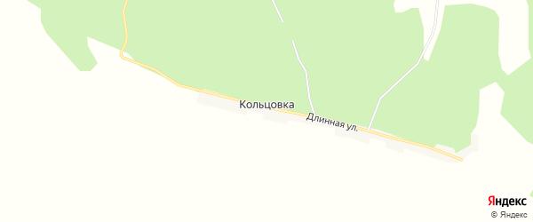 Карта села Кольцовки в Амурской области с улицами и номерами домов