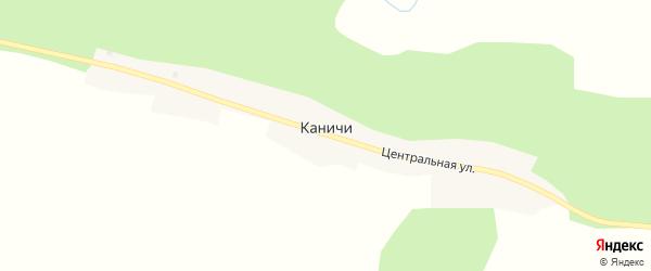 Центральная улица на карте села Каничей с номерами домов