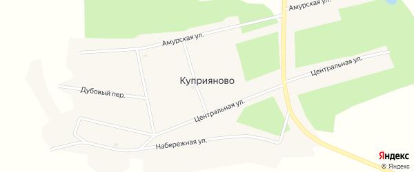 Центральная улица на карте села Куприяново с номерами домов