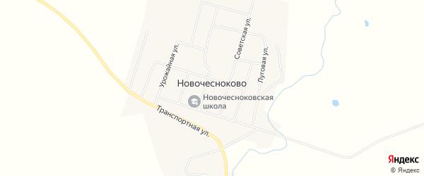 Карта села Новочесноково в Амурской области с улицами и номерами домов