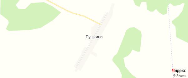 Карта села Пушкино в Амурской области с улицами и номерами домов