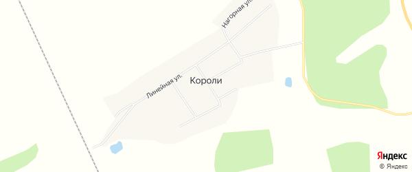 Карта села Короли в Амурской области с улицами и номерами домов