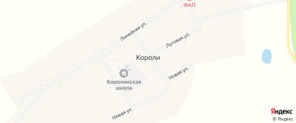 Линейная улица на карте села Короли с номерами домов