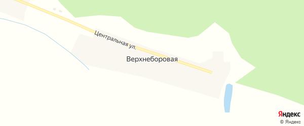Центральная улица на карте села Верхне-Боровой с номерами домов