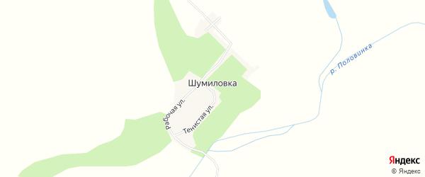 Карта села Шумиловки в Амурской области с улицами и номерами домов