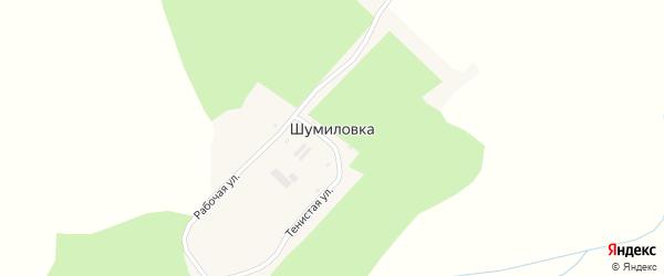 Тенистая улица на карте села Шумиловки с номерами домов