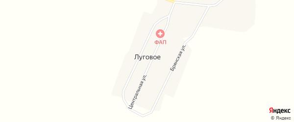 Центральная улица на карте Лугового села с номерами домов