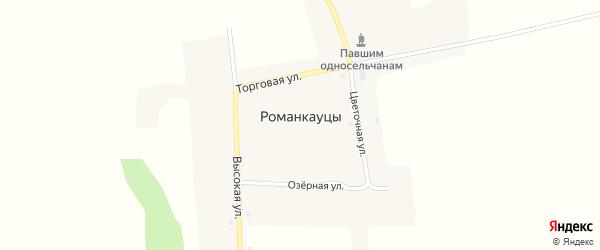 Торговая улица на карте села Романкауцы с номерами домов