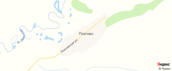 Карта села Платово в Амурской области с улицами и номерами домов