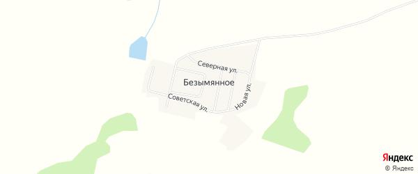 Карта Безымянного села в Амурской области с улицами и номерами домов
