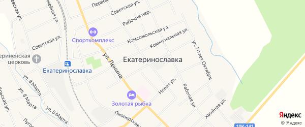 Карта села Екатеринославки в Амурской области с улицами и номерами домов