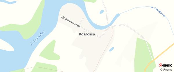 Карта села Козловки в Амурской области с улицами и номерами домов