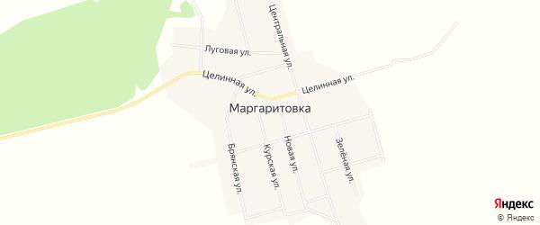 Карта села Маргаритовка в Амурской области с улицами и номерами домов