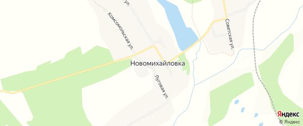 Карта села Новомихайловки в Амурской области с улицами и номерами домов