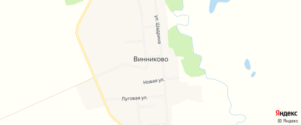 Карта села Винниково в Амурской области с улицами и номерами домов