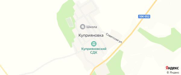 Карта села Куприяновки в Амурской области с улицами и номерами домов