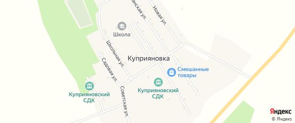 Северная улица на карте села Куприяновки с номерами домов