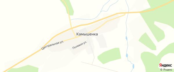 Карта села Камышенки в Амурской области с улицами и номерами домов