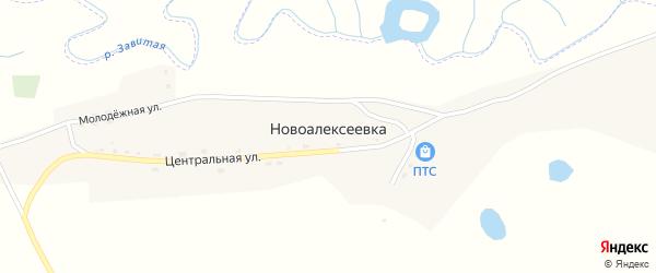 Молодежная улица на карте села Новоалексеевки с номерами домов