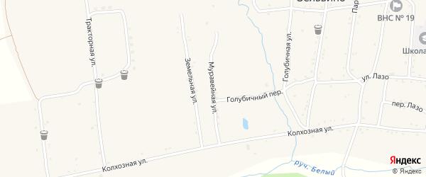 Муравейная улица на карте населенного пункта Зельвино с номерами домов
