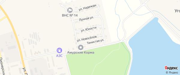 Улица Новоселов на карте Райчихинска с номерами домов