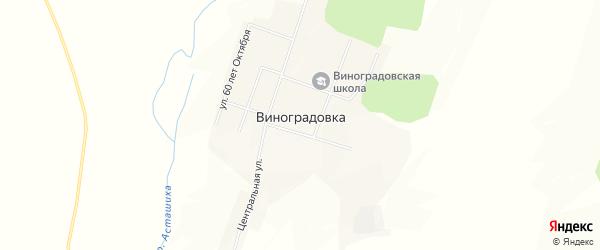 Карта села Виноградовки в Амурской области с улицами и номерами домов