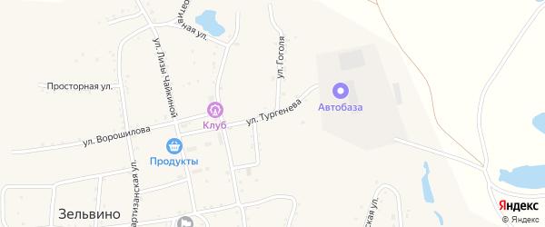 Улица Тургенева на карте населенного пункта Зельвино с номерами домов