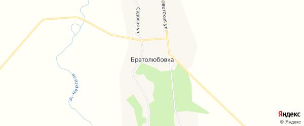 Карта села Братолюбовки в Амурской области с улицами и номерами домов