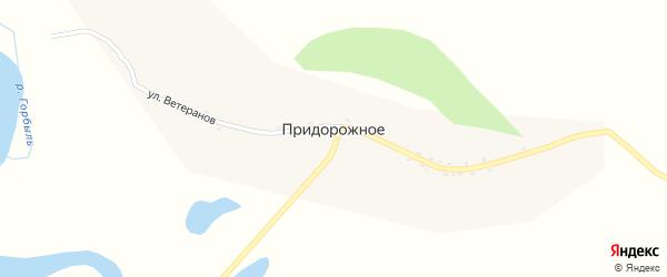Улица Ветеранов на карте Придорожного села с номерами домов