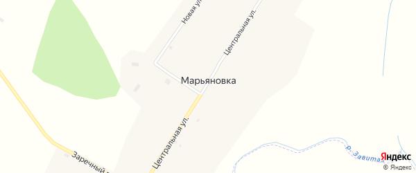 Центральная улица на карте села Марьяновки с номерами домов